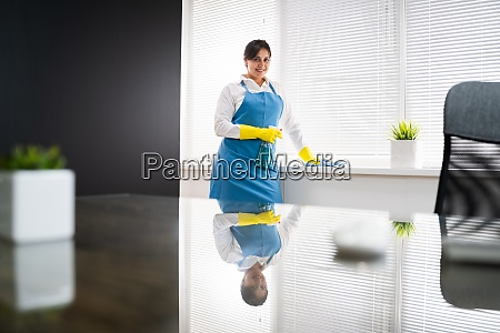 professional house cleaning service room cleaner
