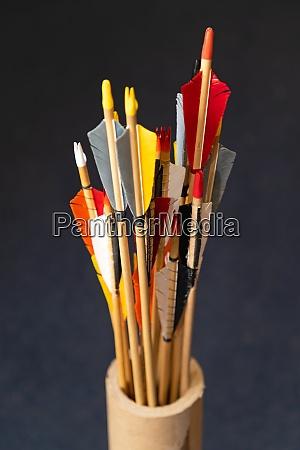 colouful arrows fins