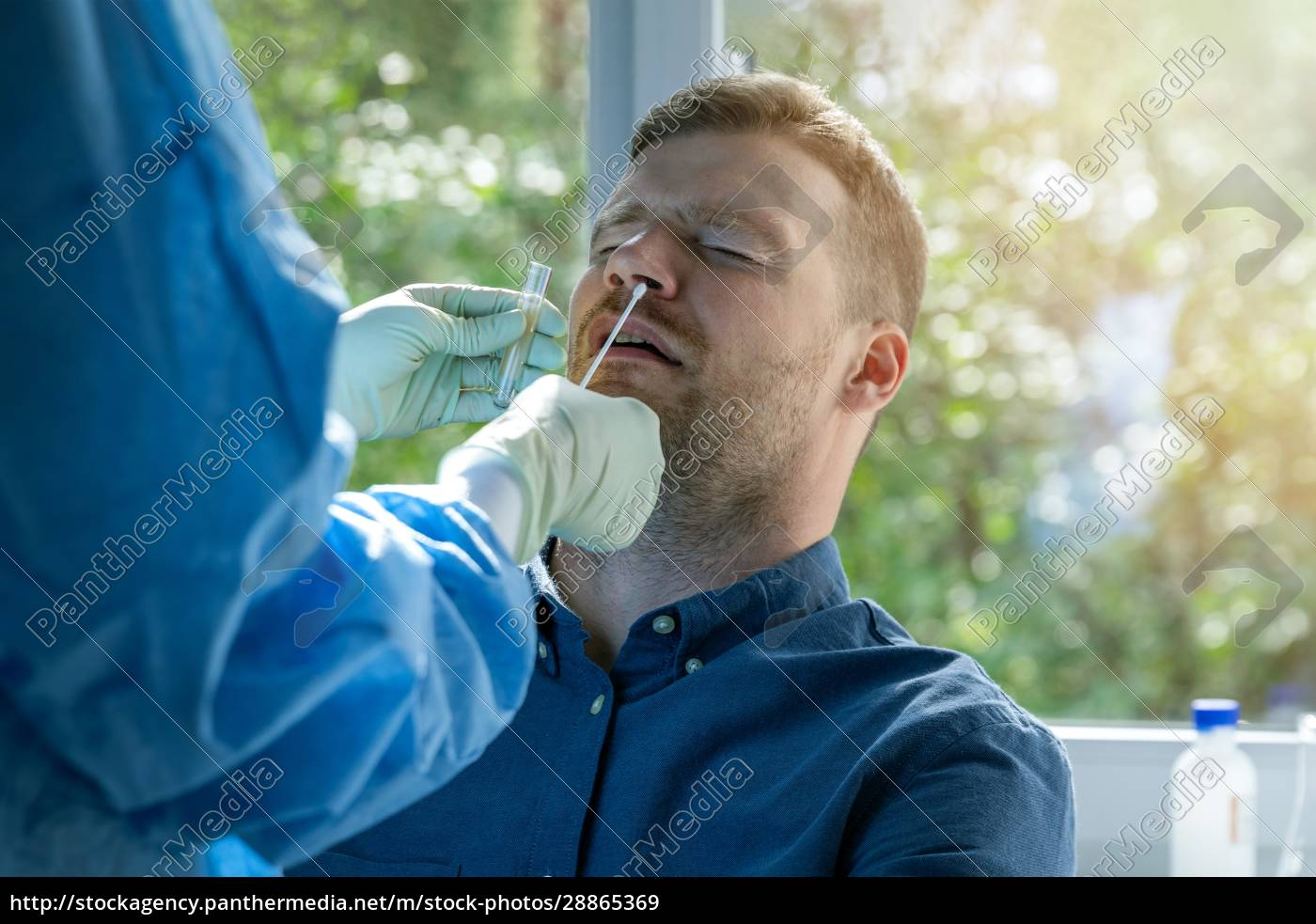 coronavirus, nasal, swab, test, -, - 28865369