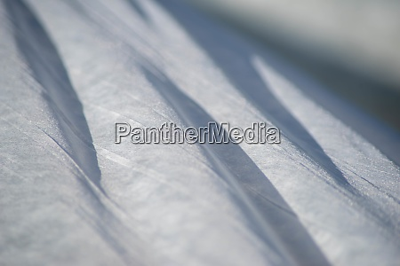 white garden fabric ripples and shines