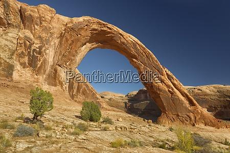 corona arch utah