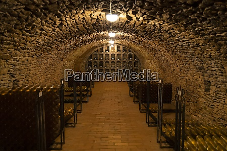 wine bottles in archive cellar ezerjo