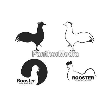 rooster logo vector illustration template