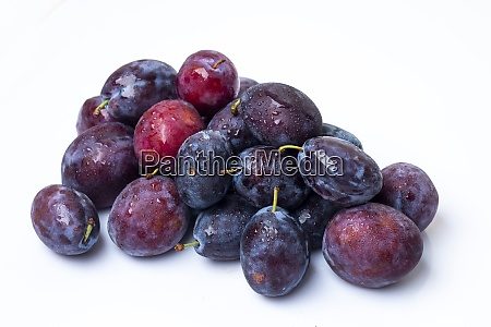 fresh moyer purple plums