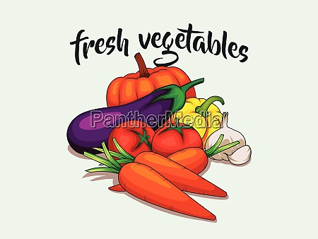 banner with fresh vegetables vector concept