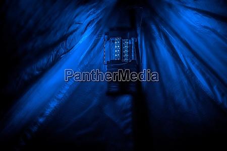 my tent lantern