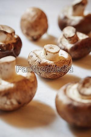 portobello mushrooms on table