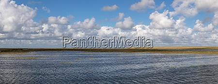 salt marsh in front of westerhever