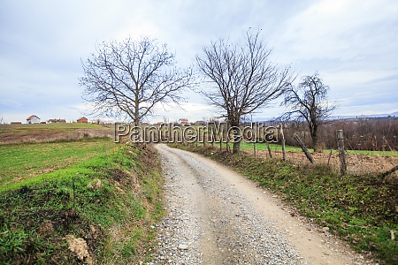 rural road countryside view
