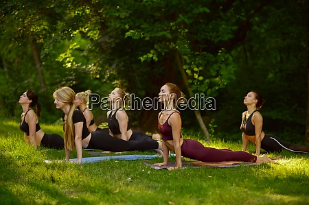 slim women doing stretching exercise group