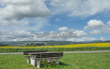 landscape in the eifel germany