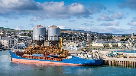 crane with wood logs gripple loading