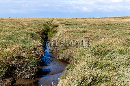 priel at westerheversand at low tide