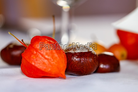decoration with chestnut on a table