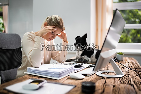 stressed accountant woman with headache