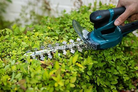 garden tools man using a