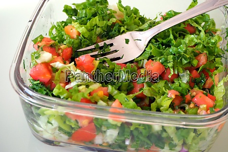 healthy lifestyle salad to lose weight