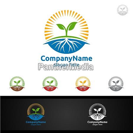 organic tree logo with leaf sun
