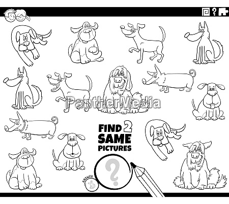 find two same dogs game coloring