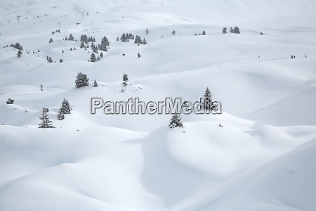 winter landscape in the mountains fresh
