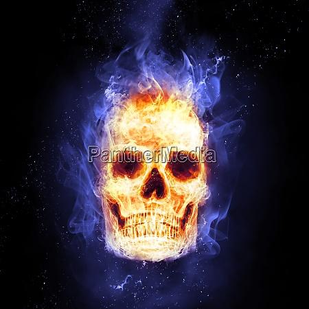 burning skull in flames in the
