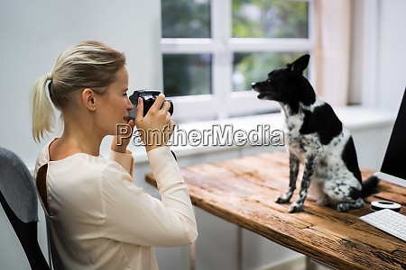woman taking photo of dog