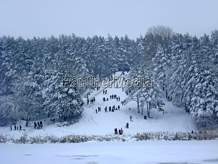 people have fun in snowy forest