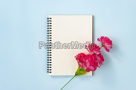 spiral notebook and red flower at