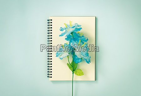 spiral notebook and blue flowers at