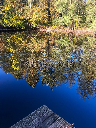 wooden dock in foreground of reflected