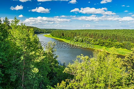 amazing river and forest landscape forest