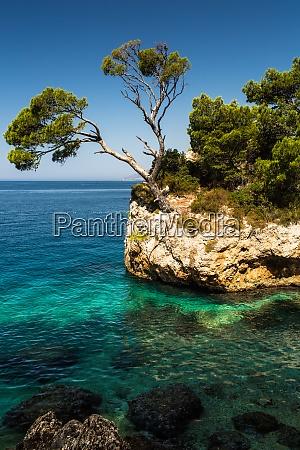 splendid seacoast of croatia makarska riviera