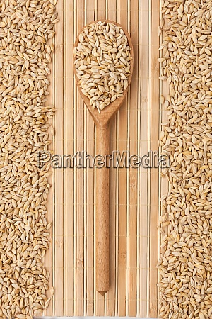 wooden spoon with barley