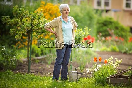 senior woman doing some gardening in