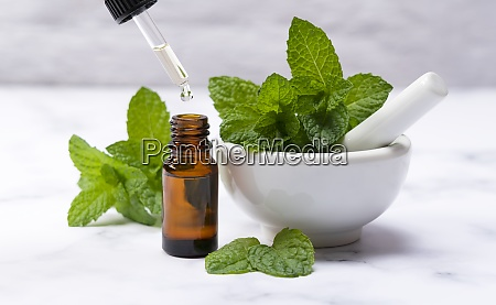 mint essential oil and mint leaves