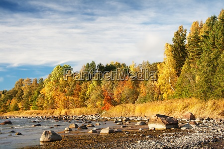 autumnal seascape on sunny day