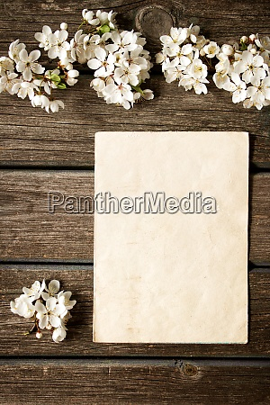 cherry flowers on wooden board