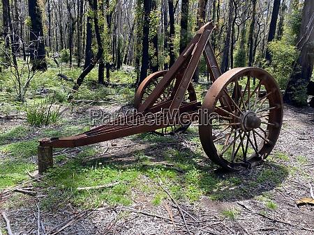 old rusty logging machinery