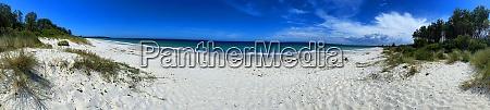 a tropical australian beach