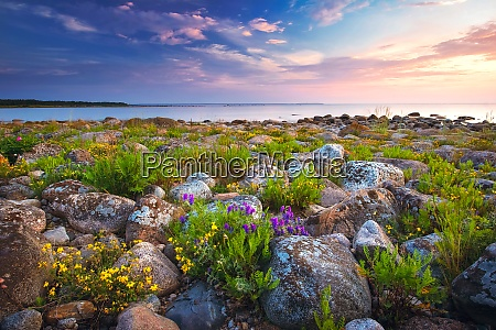rocky shores at the sea in