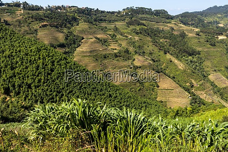 the landscape of the ha giang
