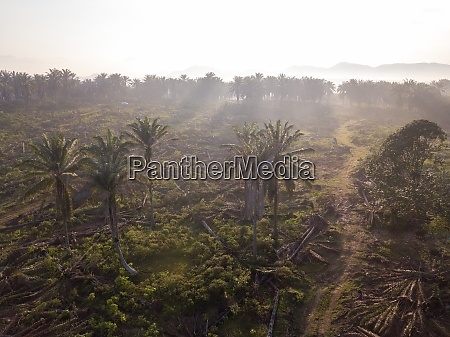 aerial view land clear at oil