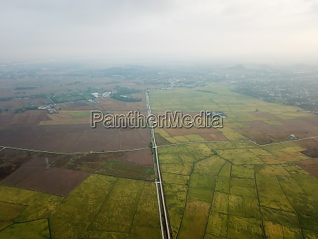 aerial view paddy field in mist