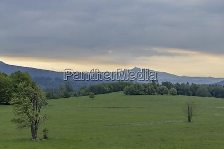 landscape in national park bohemian switzerland