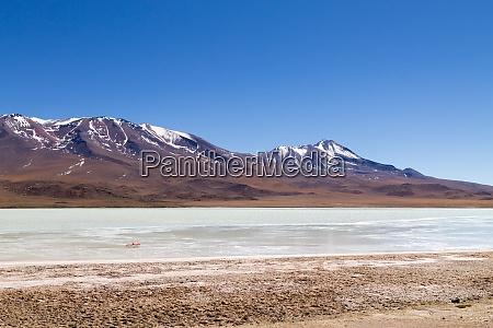 laguna hedionda view bolivia