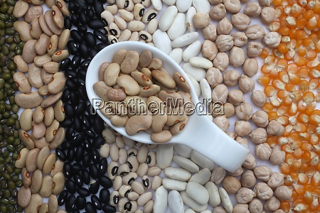 ceramic spoon with brown beans over