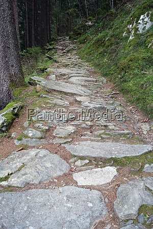 hike on the verdinser waal trail