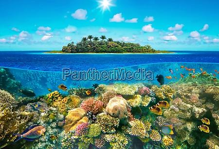 beautiful sunny tropical beach on the