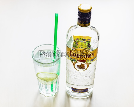 gordons london dry gin and gin