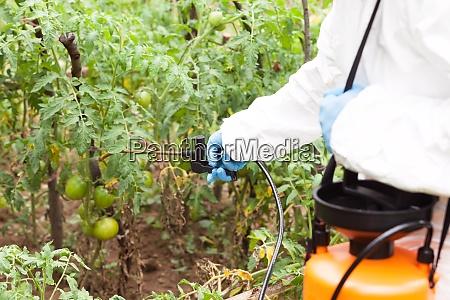 herbicide spraying non organic vegetables